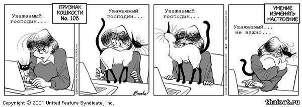 почему кошка кусается и царапается после поглаживания