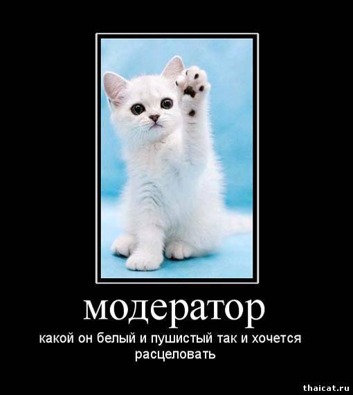 http://www.thaicat.ru/_nw/3/46091064.jpg