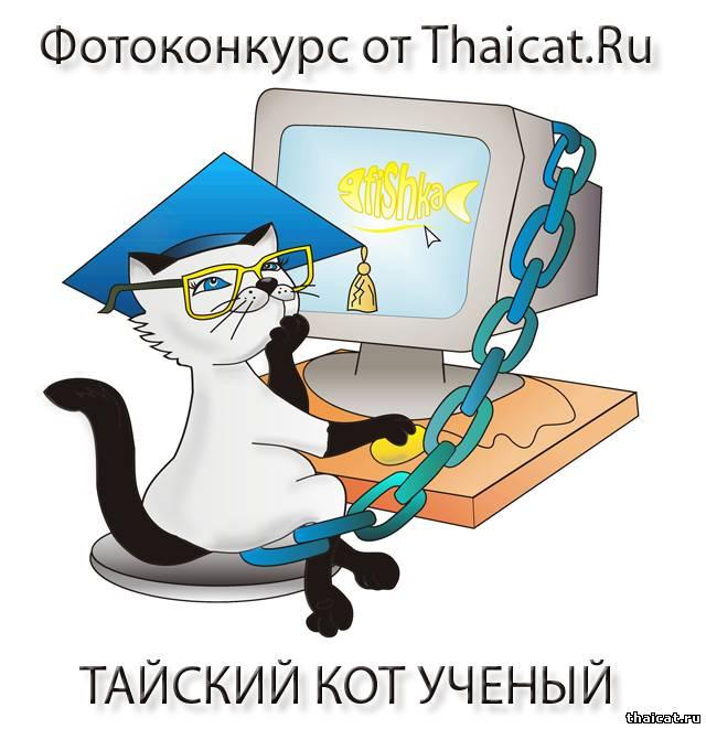 Фотоконкурс Тайский кот Ученый. Голосование