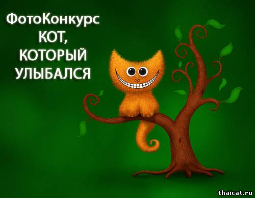 ФК КОТ, КОТОРЫЙ УЛЫБАЛСЯ. Поздравления