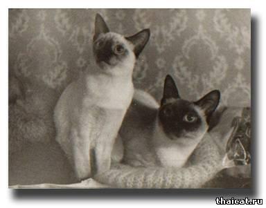 Сима с дочкой Касей
