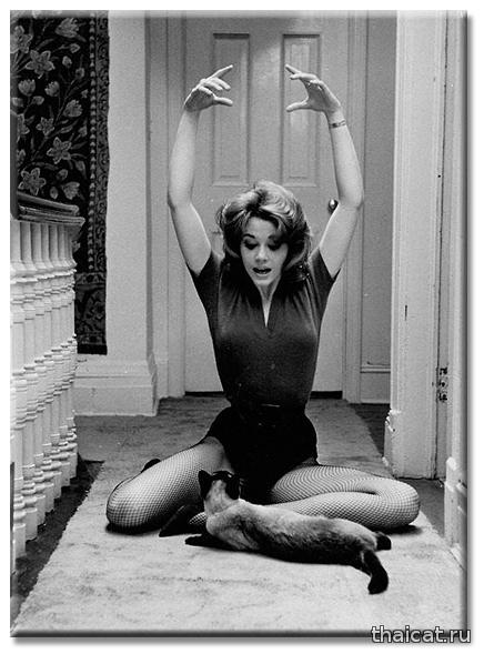 Йога с Джейн Фонда