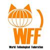 Тайская кошка: стандарт WFF