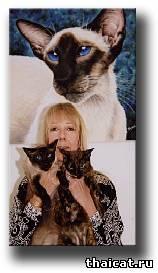 Сюзан Ле Гуд. Сиамские кошки
