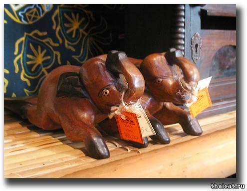 слоны сил-пойнт