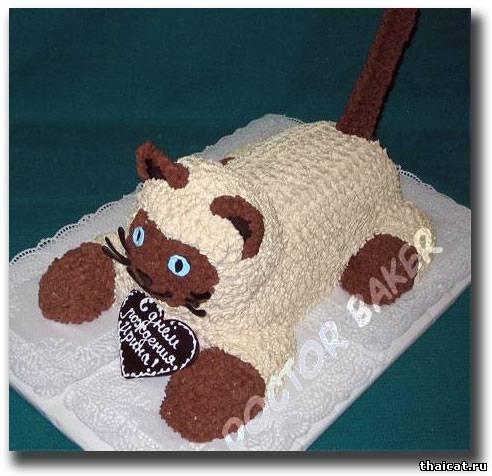 Торт кот сиамский