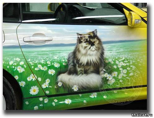 Мерседес Коты в ромашках