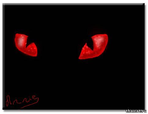 Кошачий вампиризм