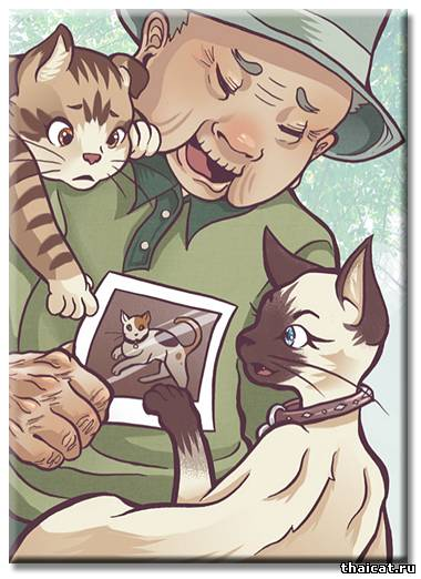 Thaicat.Ru - Книги о сиамских кошках. Кафка на пляже. Харуки Мураками. Скачать онлайн бесплатно