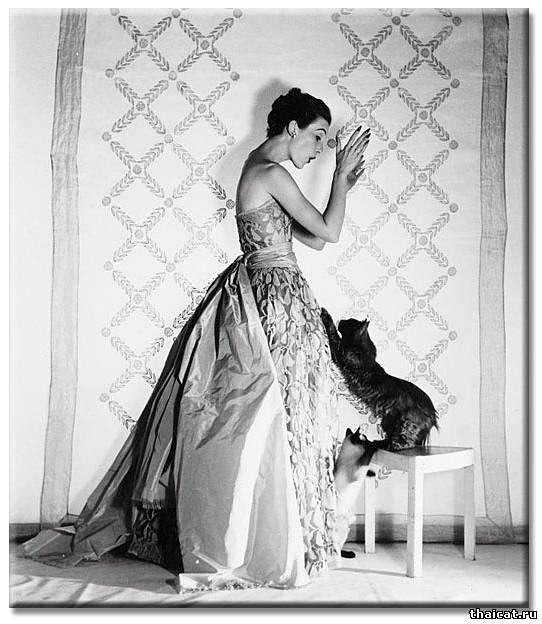 Топ-модель Мери Джейн Рассел и сиамские кошки