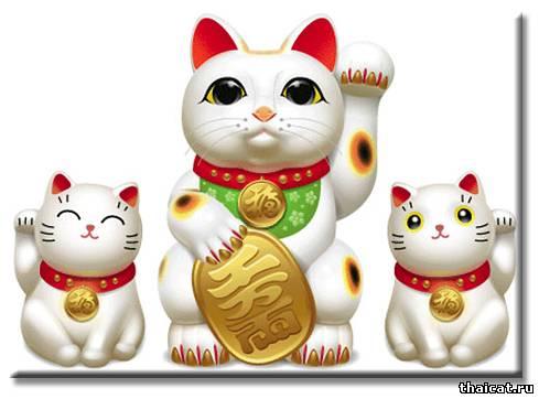Японские ученые вывели кошек на чистую воду