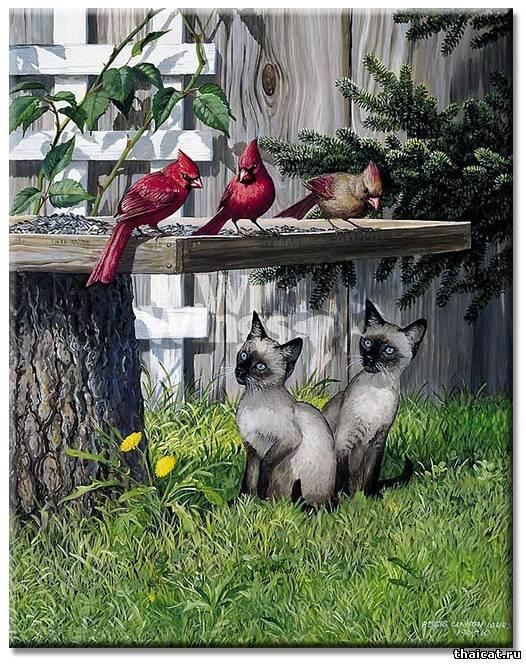 Тайские котята на картинах Персис Клейтон Вейрс