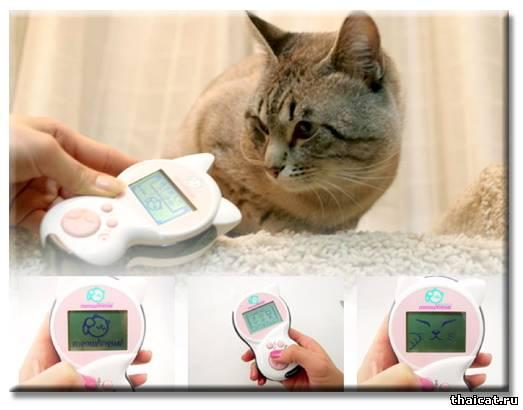 """""""Мяулингвал"""" (Meowlingual) — устройство для перевода с кошачьего языка."""