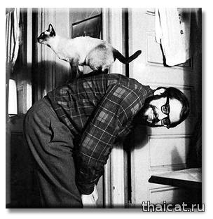 Американский поэт Аллен Гинзберг и сиамский кот