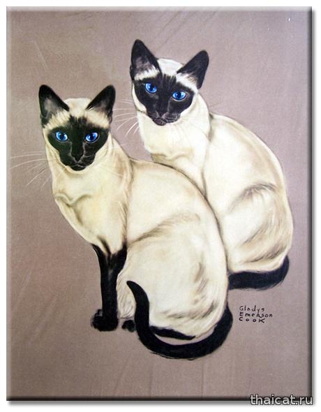 Гледис Эмерсон Кук. Сиамские кошки
