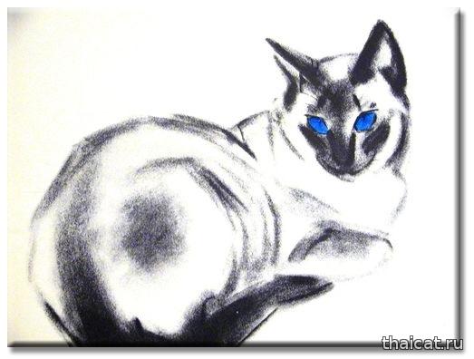 Клер Терлей Ньюберри и ее сиамские кошки