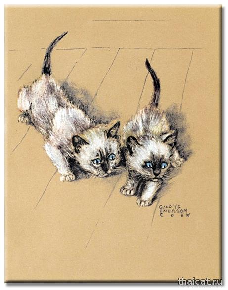 Гледис Эмерсон Кук. Сиамские котята.