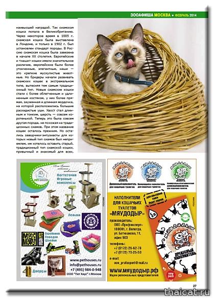 Кошки из восточного королевства. Оксана Петелина. Питомник тайских кошек Thai Riddle