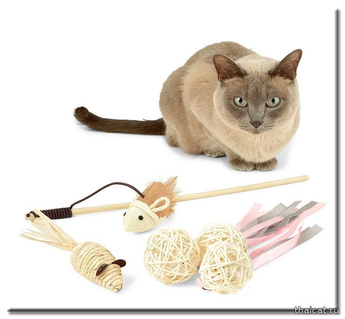 Выбираем лучшую игрушку для вашей кошки
