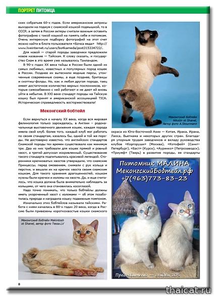 Сиамские и тайские кошки, меконг-бобтейлы