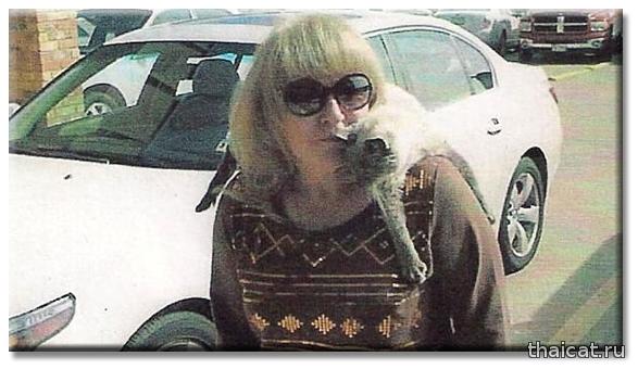 Сиамский кот 30 лет попал в Книгу Рекордов Гиннеса