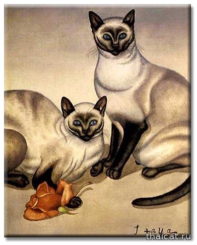 Фусса Итайя. 2 сиамские кошки и роза / Foussa Itaya.