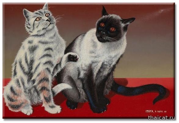 Фусса Итайя. 2 кошки/ Foussa Itaya. Les deux chats