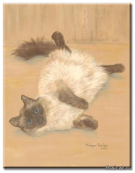 Филиппа Девидсон и сиамские кошки