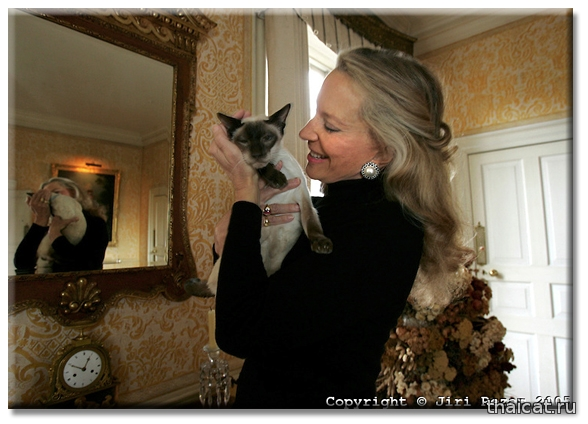 Принцесса Мишель Кентская и ее сиамская кошка Перси