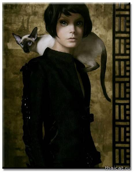 Стивен Мейзел. Сиамские кошки
