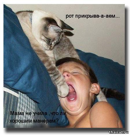 Рот прикрыва-а-аем... Мама не учила что ли хорошим манерам?