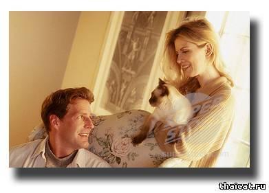 Разовый кашель у кошки у кошки