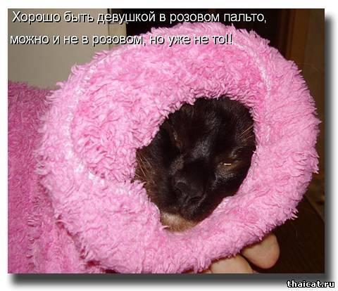 Хорошо быть женщиной в розовом пальто ::