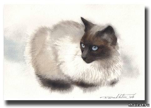 тайские кошки в живописи
