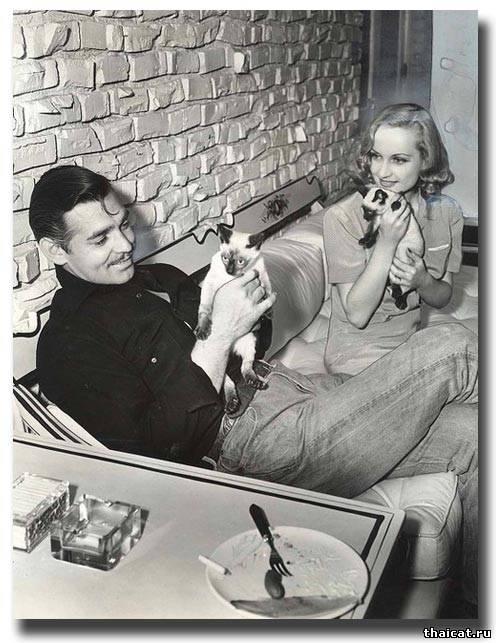 Кларк Гейбл и Кэрол Ломбард с сиамскими котятами