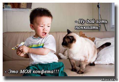 - Ну дай хоть понюхать!
