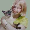 Тайские кошки - хранители монастырских святынь