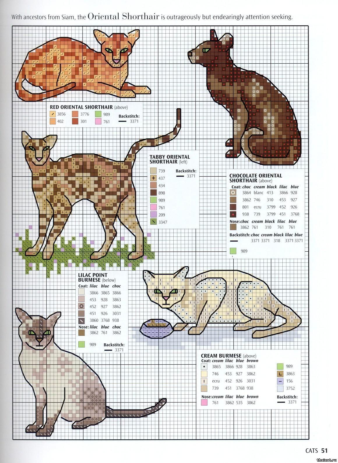 Схема вышивки кошки две кошки 31